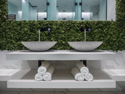 Chic Basins image
